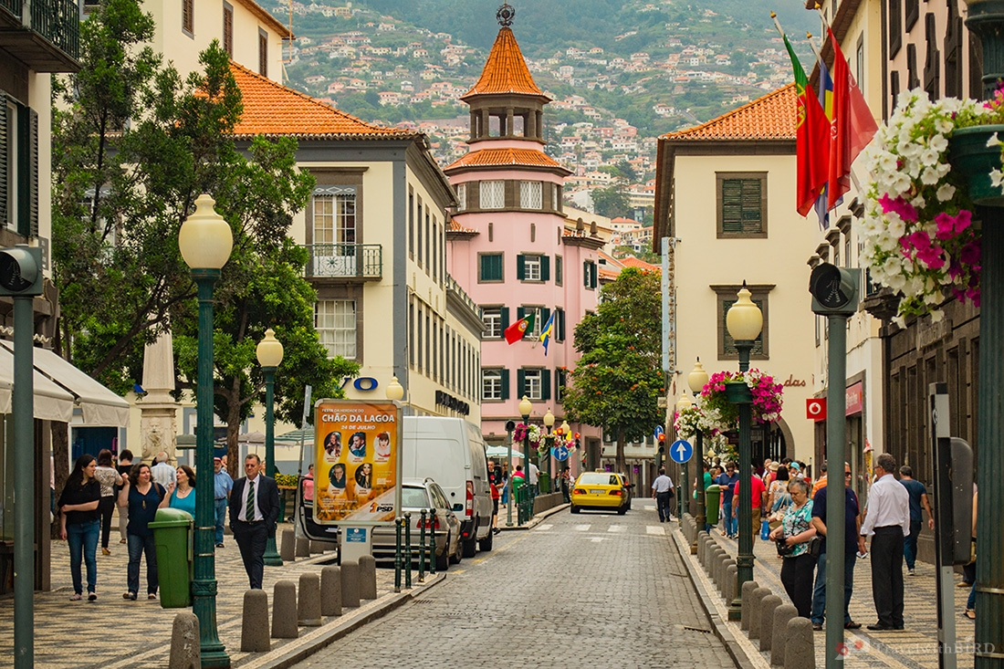 Streets of Funchal