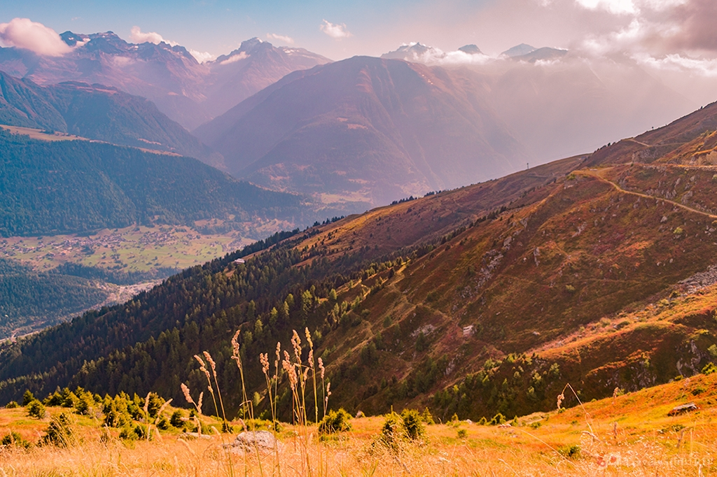 Autumn colours in Fiescheralp