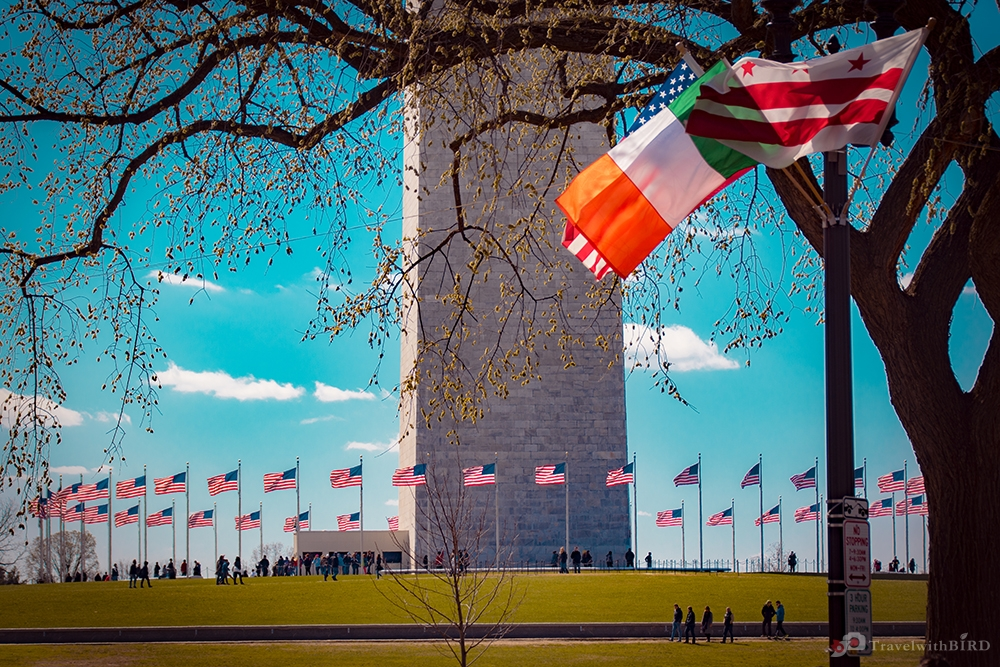 Irish flag and Washington Monument