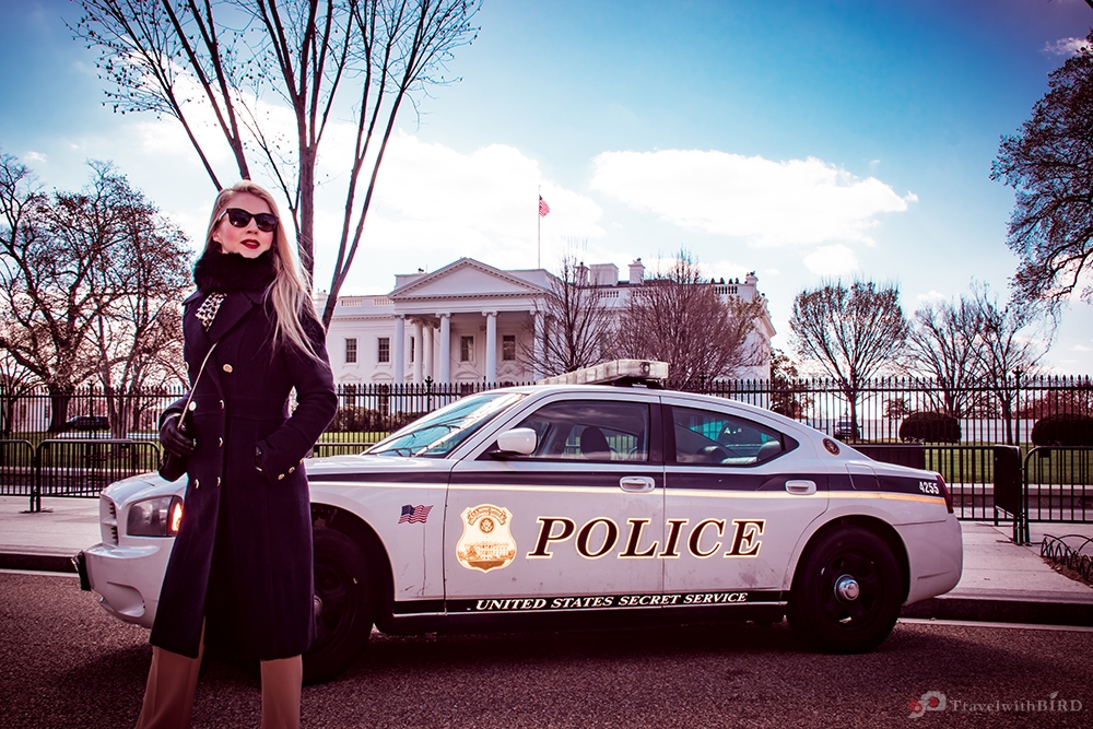 Police car before the White House