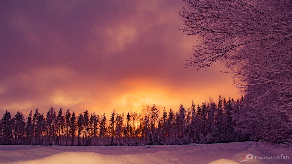 Amazing sky in Finland