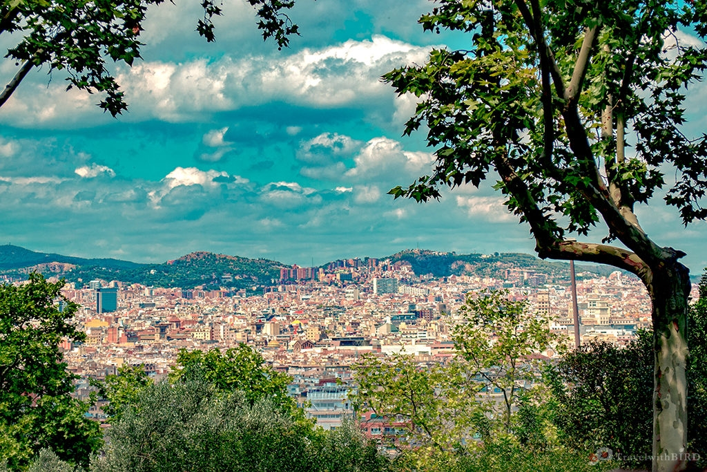 Barcelona: Almost the whole City