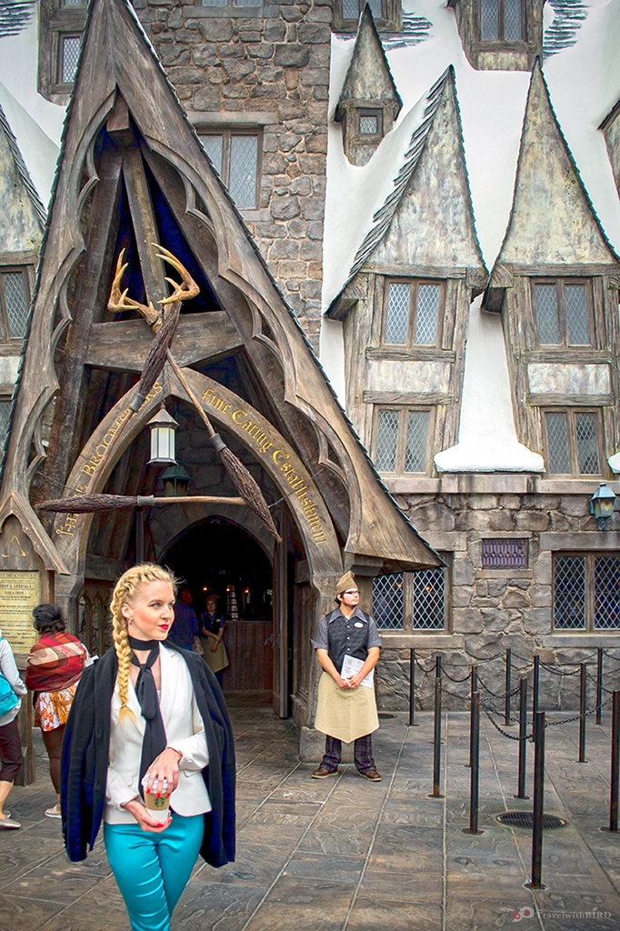 Bird in Hogsmeade