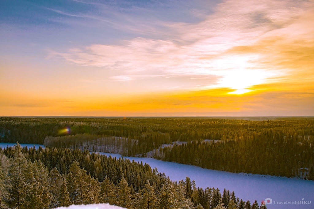 Endless woods of Finland