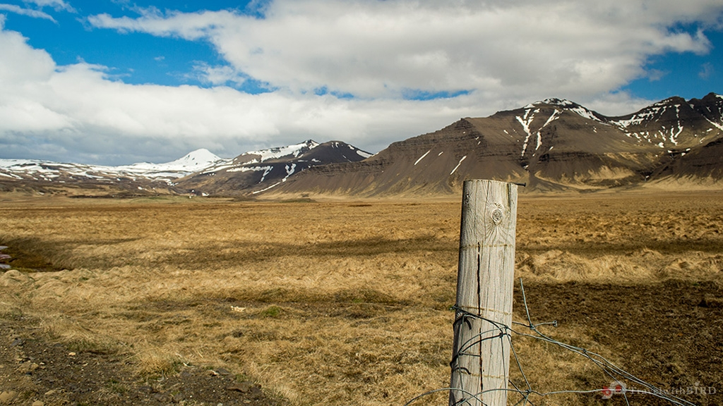Fence and Mountains in Iceland