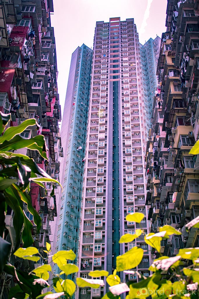 Hong Kong's Yick Fat Building
