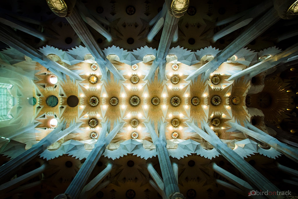Incredible ceiling of Sagrada Familia Barcelona