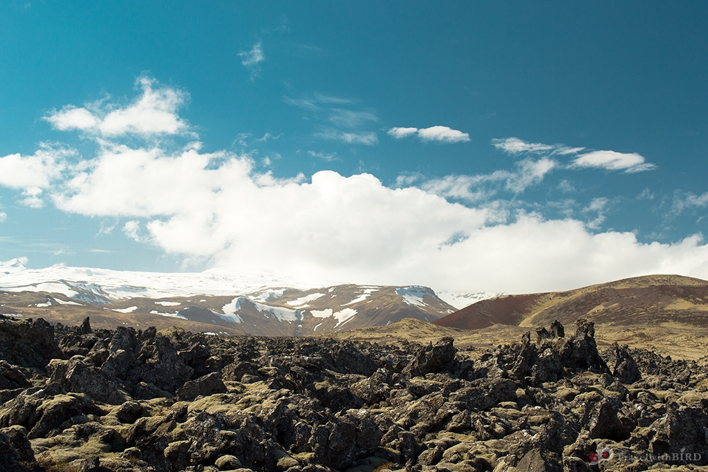 Lavafields of Iceland