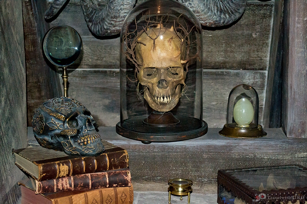 Skull replica in Hogwarts