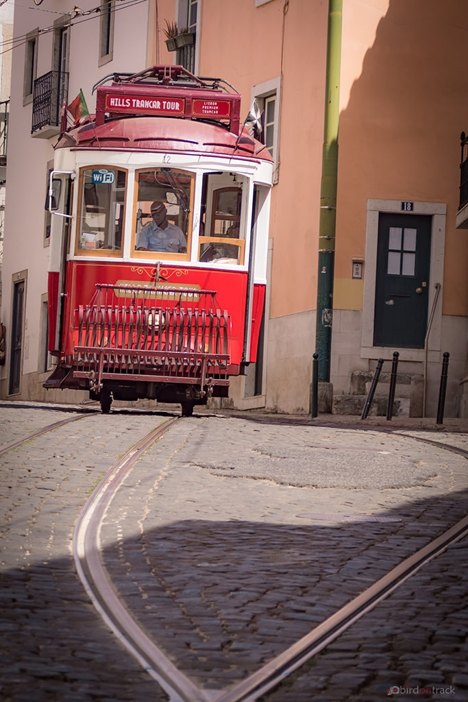 Trams of Lisbon