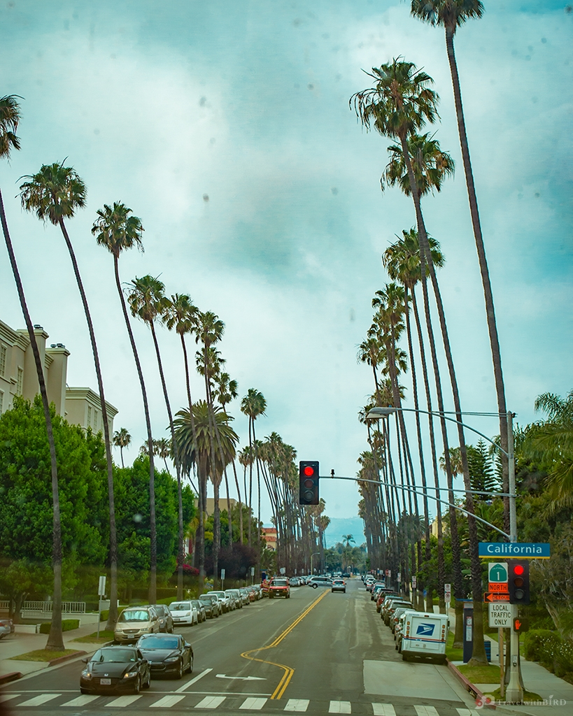 Typical street of L.A.