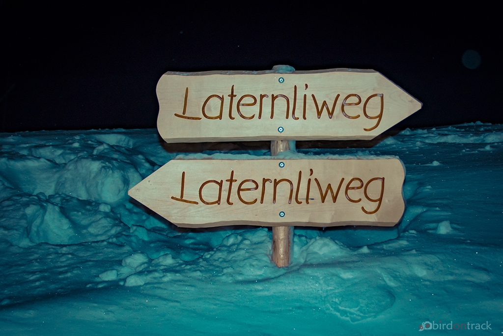 Which way to go?